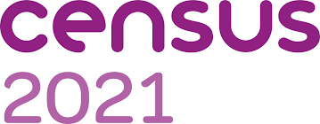 Logo for Census 2021 - purple words on a white background